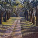 """Tree Lined Drive"" by ediehamblin"
