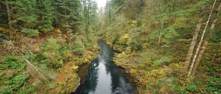 Lewis River, Vancouver, Washington