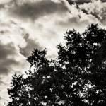 """""""Autumn Clouds"""" by Fotofrieze"""