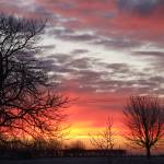 """Winter colour sky"" by delworsley"