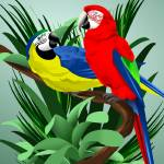 """Two Parrots"" by waterart"