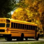 """""""School Bus - Departure"""" by Fotofrieze"""