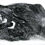 """wolf"" by axvenus"