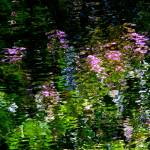 """""""Giverny spirit V"""" by Woodsman"""