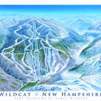 Wildcat New Hampshire Art Prints & Posters by James Niehues