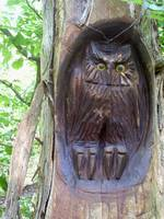 Indian Owl Carving