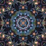 """Nectarine Dreams"" by curiousdreams"