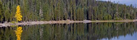 Elk Lake near Mount Bachelor