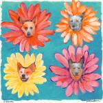 Groovy Gals Dog Portrait by RD Riccoboni by RD Riccoboni