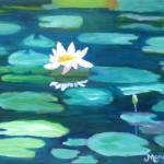 """White Water Lily on Turquoise Lily Pads"" by MarcyBrennanArt"