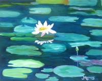 White Water Lily on Turquoise Lily Pads