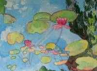 Pink Water Lilies on Blue Pond