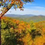 """Autumn Splendor"" by mjculbertson"