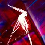 """""""The Pelican"""" by byronmayart"""