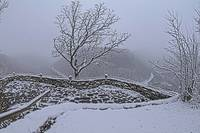 Hawks Nest Overlook in Snow