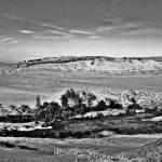 """Provincetown Dunes"" by bavosiphotoart"