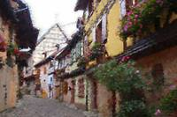 Streets of Eguisheim - Oil