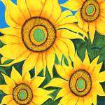 """""""Sunflowers for Hailey"""" by StrandStudio"""