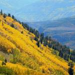"""Yellow and Blue Mountainside Mosaic"" by gmeyerle"