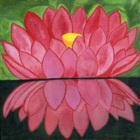 lotus and reflection