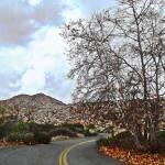 """The Unused Road"" by GlennMcCarthyArtPhoto"