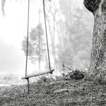 """Coosaw Tree Swing"" by Hansen"