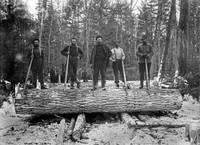 5147-michigan-logging-4-1880-1899