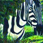 """Zebra in Hiding"" by PjCreates"