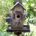 """Little Wooden Birdhouse"" by PjCreates"