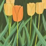 """""""83 Sangha Tulips 8x10 IK"""" by JyotishNovak"""