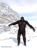 Bigfoot on the Mountain Pass