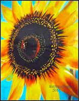Bright and Sassy Sunflower