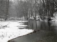 Snowy Creek2