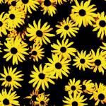 """Funky Yellow Flowers"" by studiodestruct"