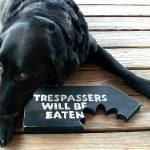 """Trespassers Will Be Eaten"" by"