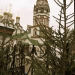 """""""Christmas Trees"""" by javanslyke"""