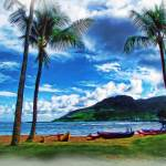 """Kauai Beach and Palms"" by jbjoani2"