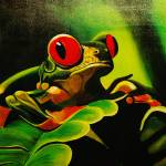 """Red Eyed Tree Frog"" by bings"