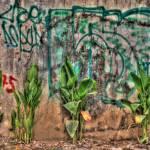 """Vandalism"" by meyk0830"