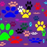 """""""Puppy Feet"""" by dasiygirl"""