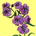 """""""Flower 9"""" by kostliva"""