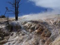 Mammoth Hotsprings