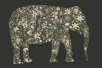 Elephant grey white green