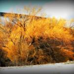 """Winter Fire"" by photosbybritney"