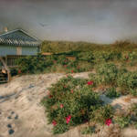 """Gooseberry Beach Plum"" by Robin-Lee"