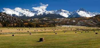 Colorado Hay Field