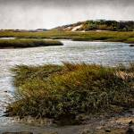 """Cape Cod National Seashore"" by jbjoani2"