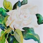 """""""Passionate Gardenia"""" by BHT"""