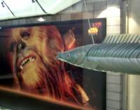Flying Fish Kissing a Wookie @ Waterloo Station, L