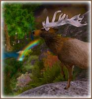 Enchanted Elk
